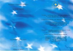 歐盟28國創新專利-雙排多向校驗標準規